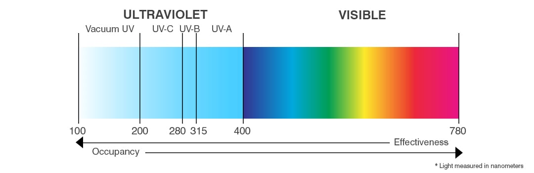 ultraviolet and visible light spectrum